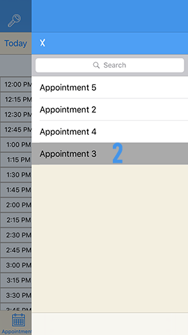 Appointment Booking Step 2